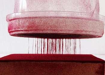 Cola para gesso artesanato